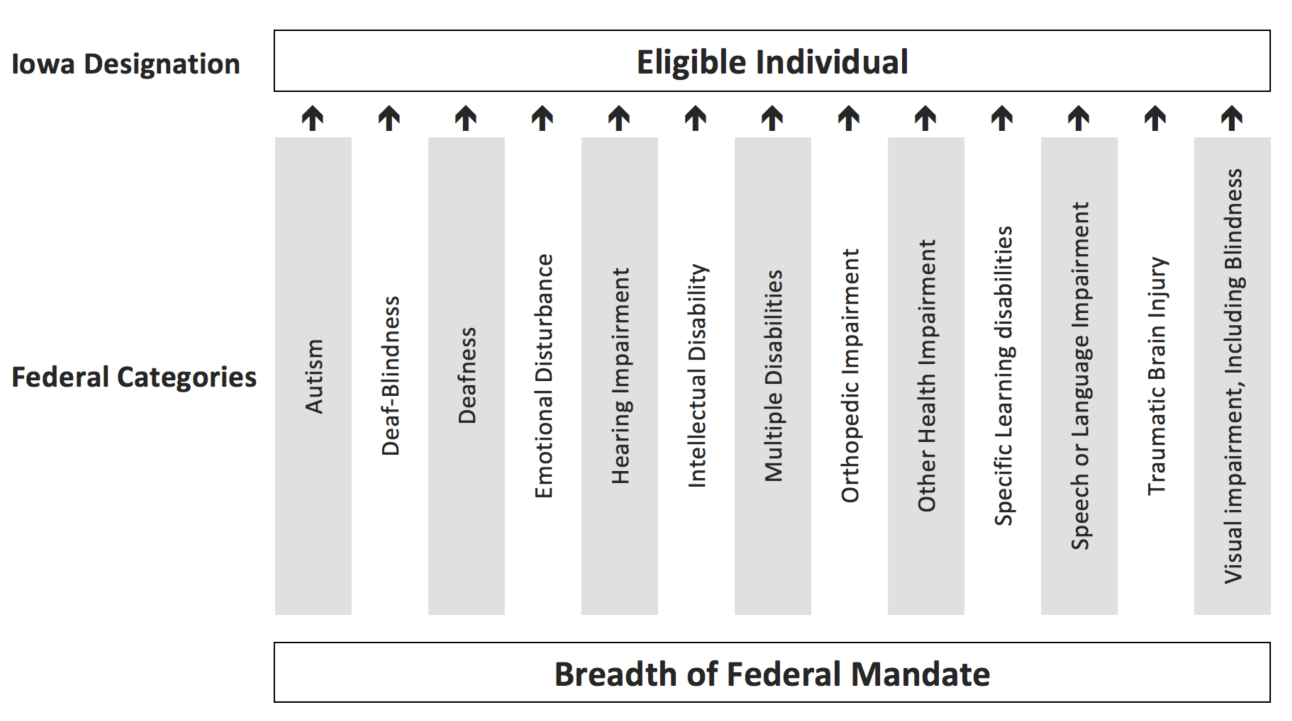 A list of federal categories that Iowa uses to determine if an individual is eligible for specially designed education. These categories include autism, deaf-blindness, deafness, emotional disturbance, hearing impairment, intellectual disability, multiple disabilties, orthopedic impairment, other health impairment, specific learning disabilities, speech or language impairment, traumatic brain injury, or visual impairment, including blindness.